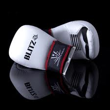Sparring Mitts